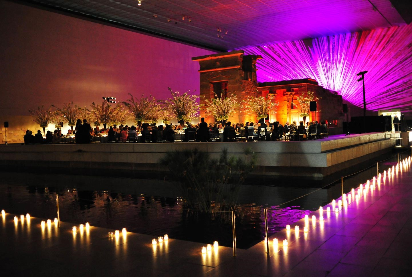 Fundraising Event at the Metropolitan Museum of Art
